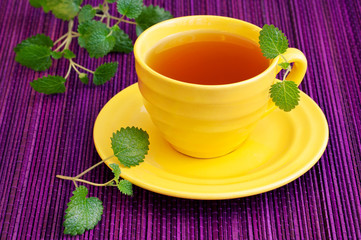 Herbal Tea  with a fresh lemon balm leaves on a table.