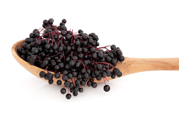 Elderberry Fruit