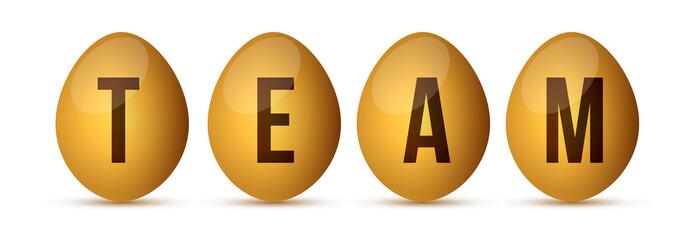 egg team concept