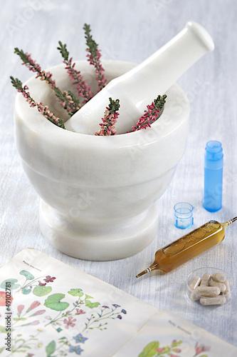 Médecine par les plantes - Symbole