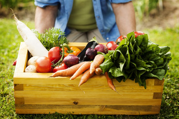 Wooden box filled fresh vegetables