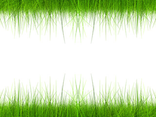 High resolution 3d green grass frame isolated on white