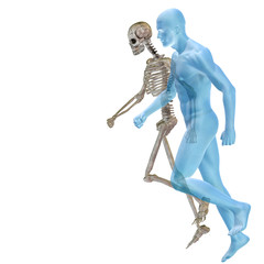High resolution conceptual human for anatomy,medicine and health