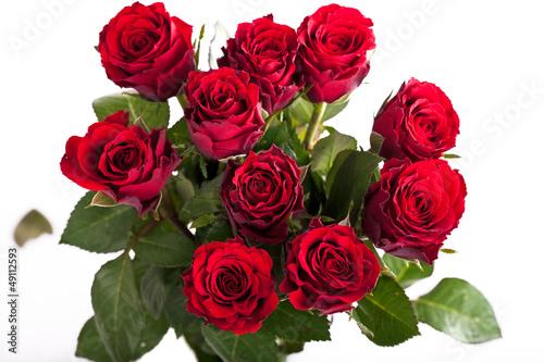 frischer Strauß rote Rosen