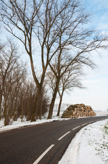 Stock pile sawed trees along the side of the road in winter