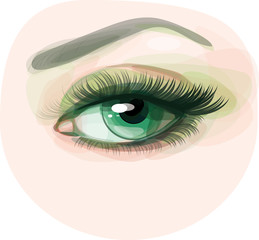 Vector of beautiful green woman's eye.
