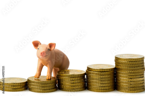 Schwein auf Münzstapel