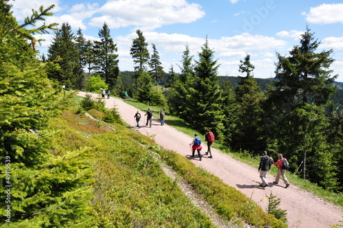 Leinwandbild Motiv Wandern im Thüringer Wald