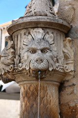 Lion fountain in Dubrovnik, Croatia