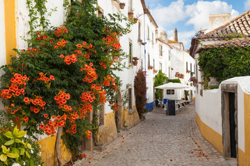 Typical street of Obidos, a medieval town in Portugal