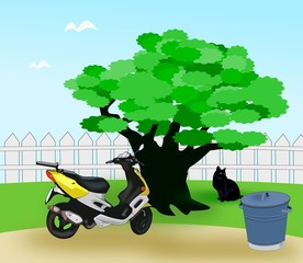Moped in the Garden