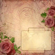 Card for greeting or invitation on the vintage background with r