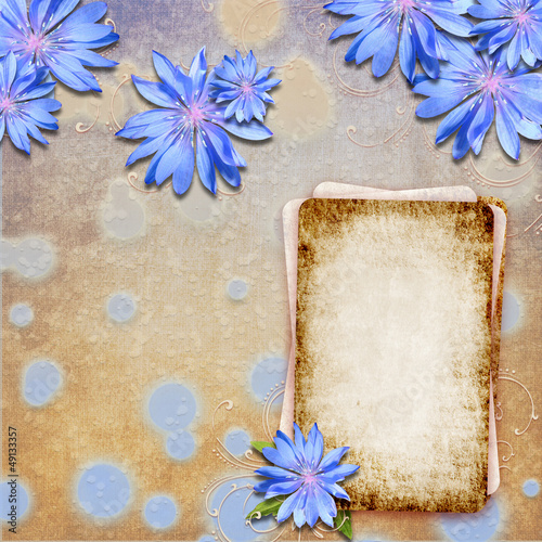 Grunge beige - blue background with chicory and paper card