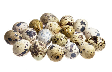 quail eggs on the white background