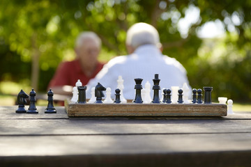 Active retired people, two old friends playing chess at park