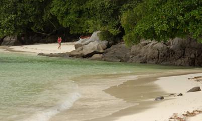 Spiggia delle Seychelles