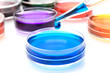 Pipette with drop of color liquid and petri dishes