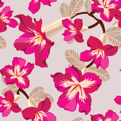Floral seamless pattern with pink flowers, hand-drawing. Vector
