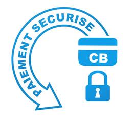 paiment sécurisé sur symbole  bleu