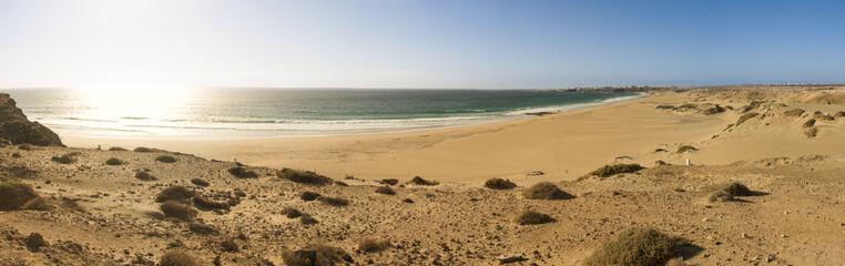 Fuerteventura desert beach panorama