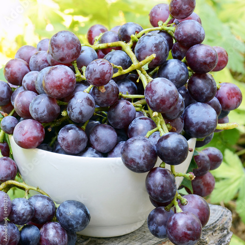 Freshly-picked grapes in the cup
