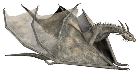 Fantasy Dragon - Computer Artwork