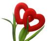Dwa serca 2