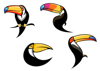 Funny toucan mascots and symbols