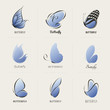 Butterfly. Collection of design elements. Vector illustration.