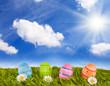 bunte Ostereier auf Rasen (IV)