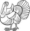 farm turkey cartoon for coloring book