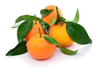 Blätter, Clementinen