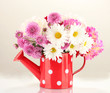 daisies and dahilas in vase isolated on white