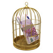 Birdcage with Euro notes inside