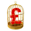 Birdcage with UK Pound symbol inside
