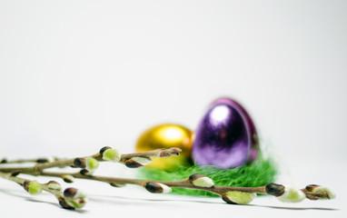 Weidenkätzchen mit Eiernest