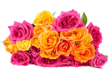 mixed pink and yellow rose