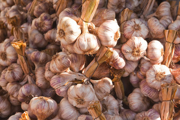Garlic on sale at a french market