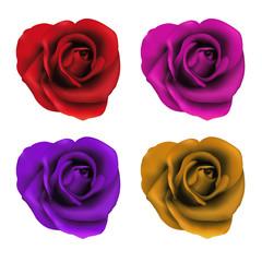 Quatre roses