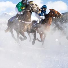 Horse Grand Prix