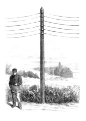 Telegraph Pole - 19th century