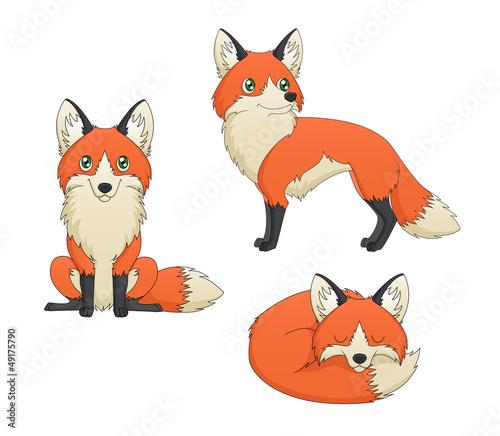 Fox Set