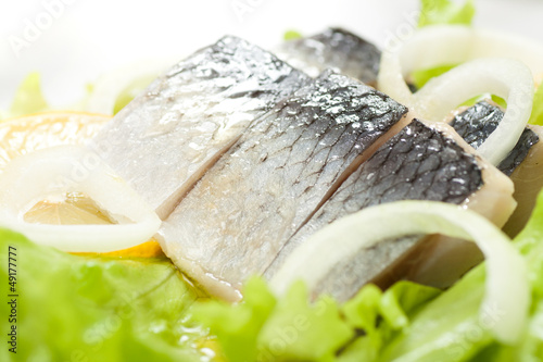 Herring with onion - 49177777