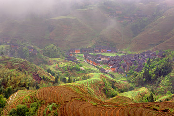 The Jinkeng Hongyao Rice Terraces Scenic Area.