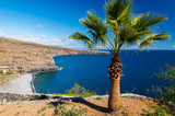 Palm tree bay beach sea water, Playa Santiago, La Gomera island