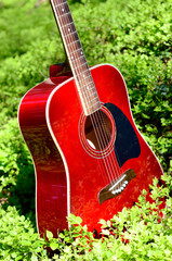 acoustic guitar in the grass in the forest