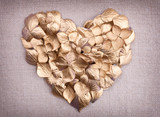 Fototapety Golden hydrangea  flower petals  in the shape of a heart