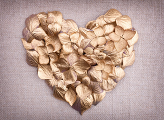 Golden hydrangea  flower petals  in the shape of a heart