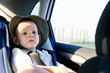 Cute little boy passenger in a car