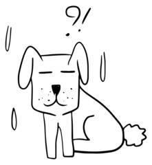 Dog confuse